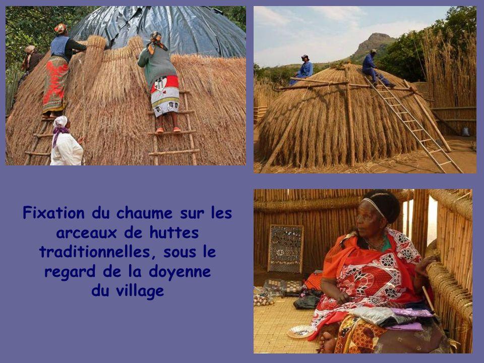 Village swazi de Matsamo au pied du « Rocher de lexécution » où le condamné par le roi devait sauter dans le vide Accueil par le Chef du Village et no