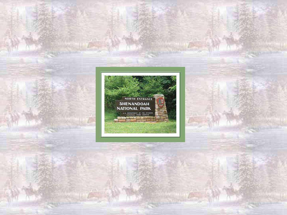Son peuple peut danser dans la joie ! Shenandoah, qui aimait les européens, a bien œuvré pour la paix. Sa mémoire est vénérée par un musée qui porte s
