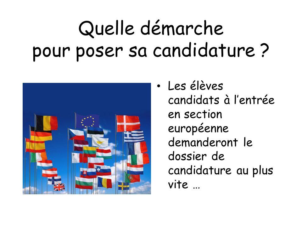Quelle démarche pour poser sa candidature ? Les élèves candidats à lentrée en section européenne demanderont le dossier de candidature au plus vite …