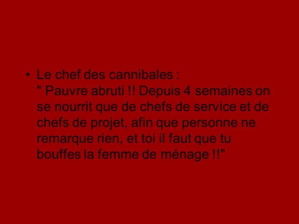 Le chef des cannibales : Pauvre abruti !.