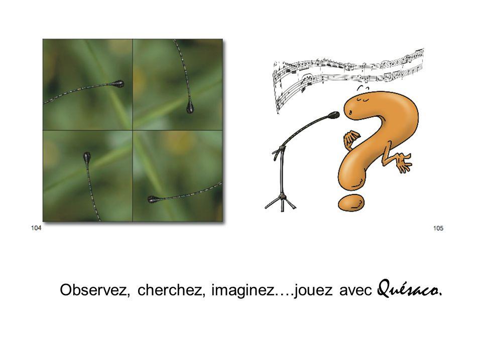 Observez, cherchez, imaginez….jouez avec Quésaco.