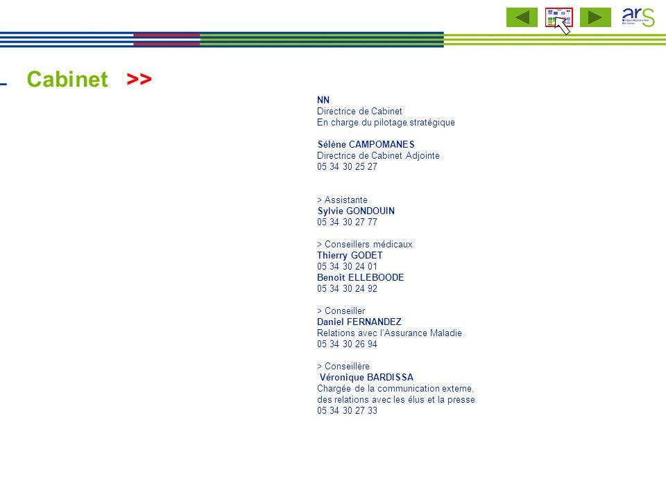 Cabinet >> Service communication NN Directrice de Cabinet En charge du pilotage stratégique Sélène CAMPOMANES Directrice de Cabinet Adjointe 05 34 30
