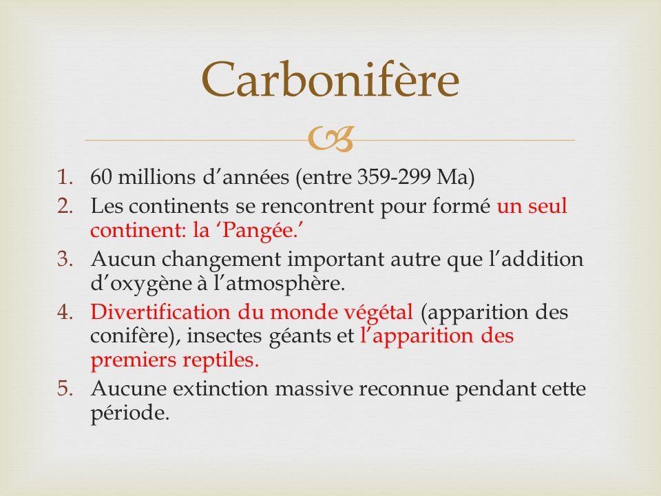 1.60 millions dannées (entre 359-299 Ma) 2.Les continents se rencontrent pour formé un seul continent: la Pangée.