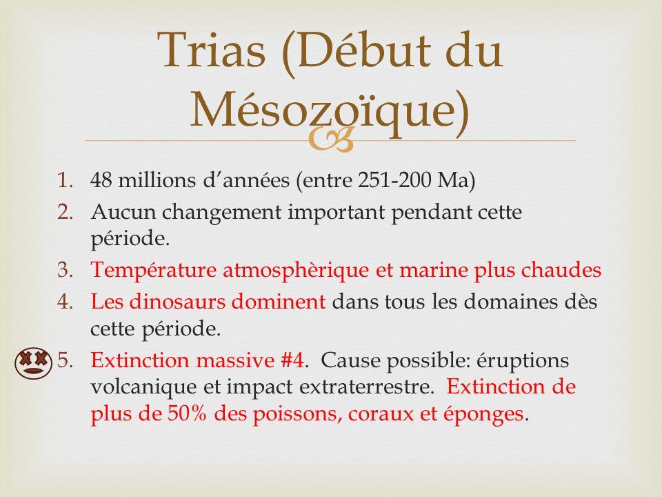 1.48 millions dannées (entre 251-200 Ma) 2.Aucun changement important pendant cette période. 3.Température atmosphèrique et marine plus chaudes 4.Les