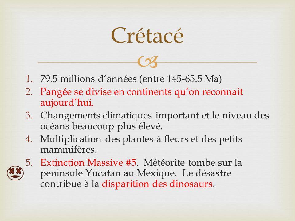 1.79.5 millions dannées (entre 145-65.5 Ma) 2.Pangée se divise en continents quon reconnait aujourdhui. 3.Changements climatiques important et le nive