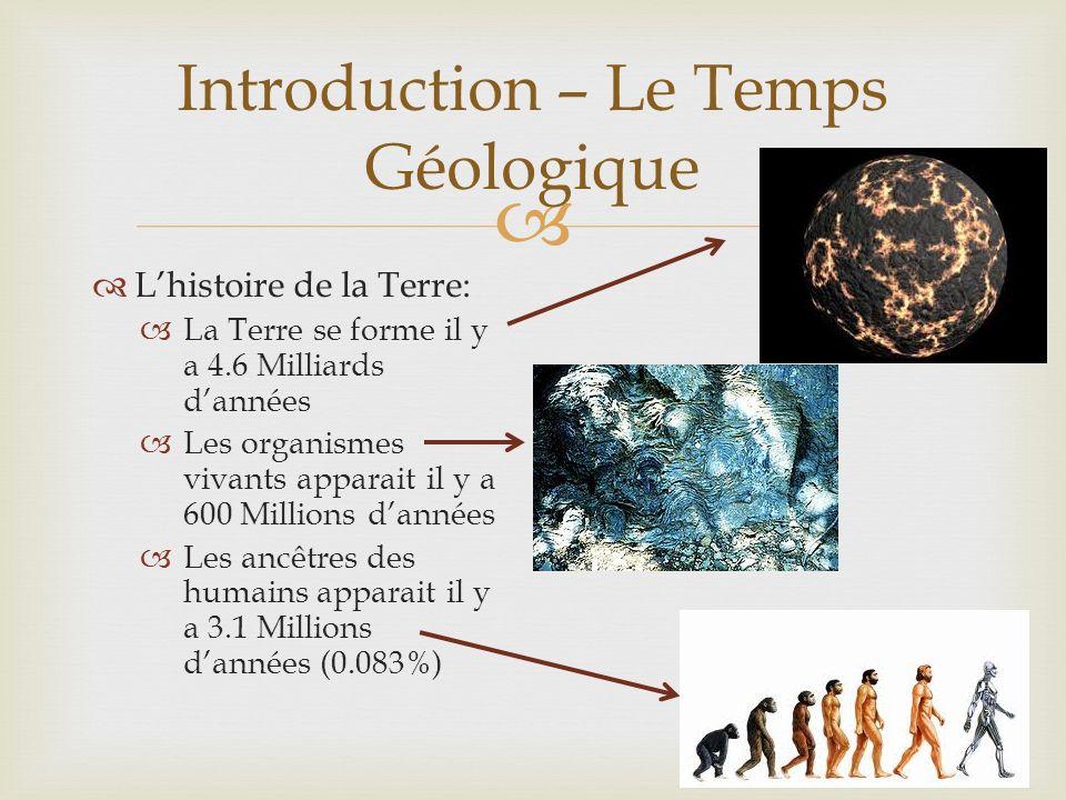 Une Comparaison Si toute lhistoire des organismes vivants était représenté par une année sur le calendrier… Introduction – Le Temps Géologique Les ancetres de lespèce humaine apparait le 31 Décembre à environ 16:00