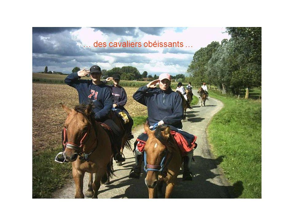 … des cavaliers obéissants …