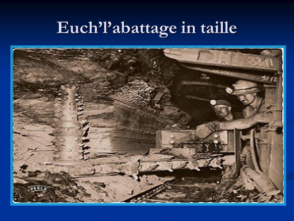 Eulcage