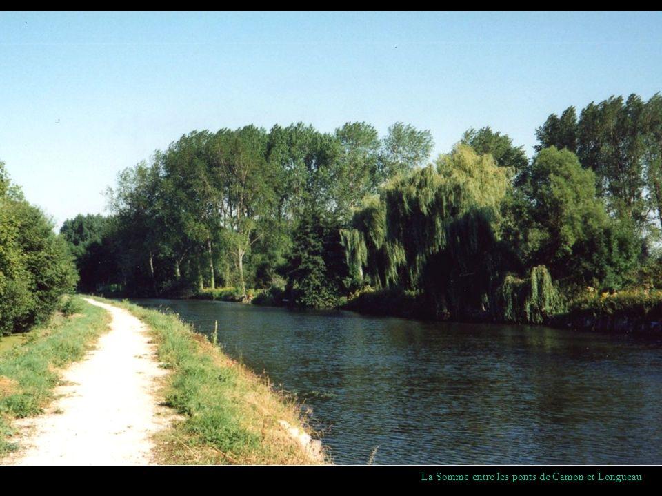 La Somme entre les ponts de Camon et Longueau