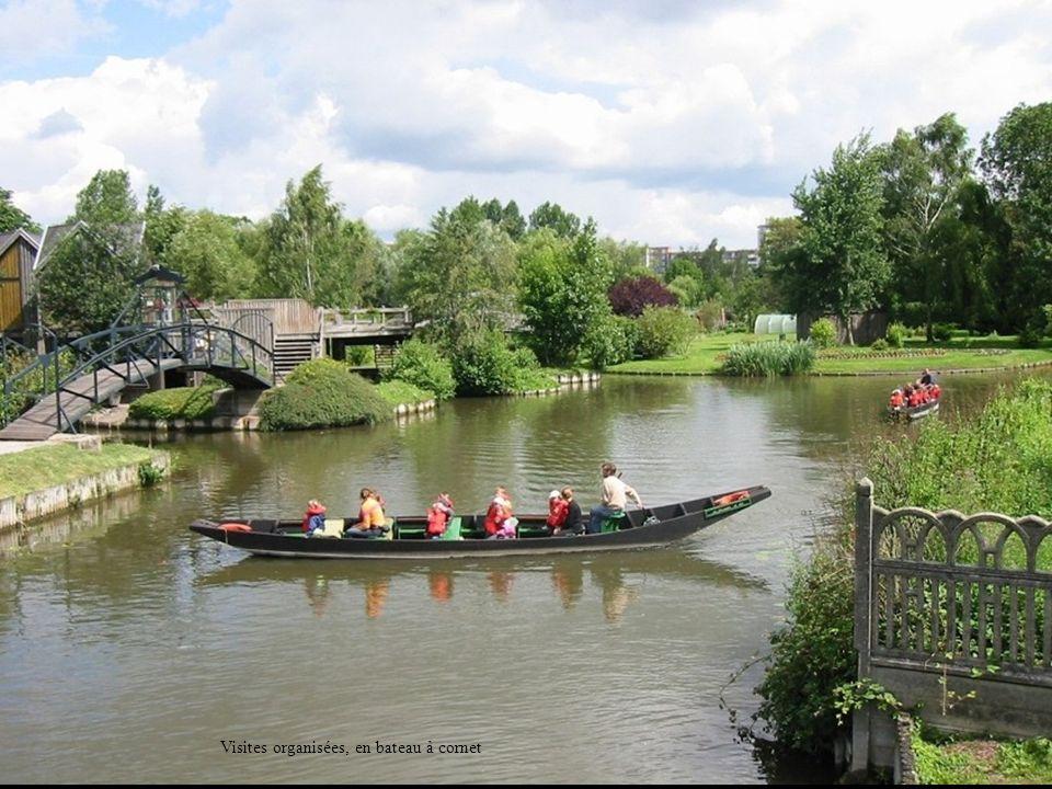 Etang entre Rivery et la Somme : « chés intailles » Fin de la 1e partie