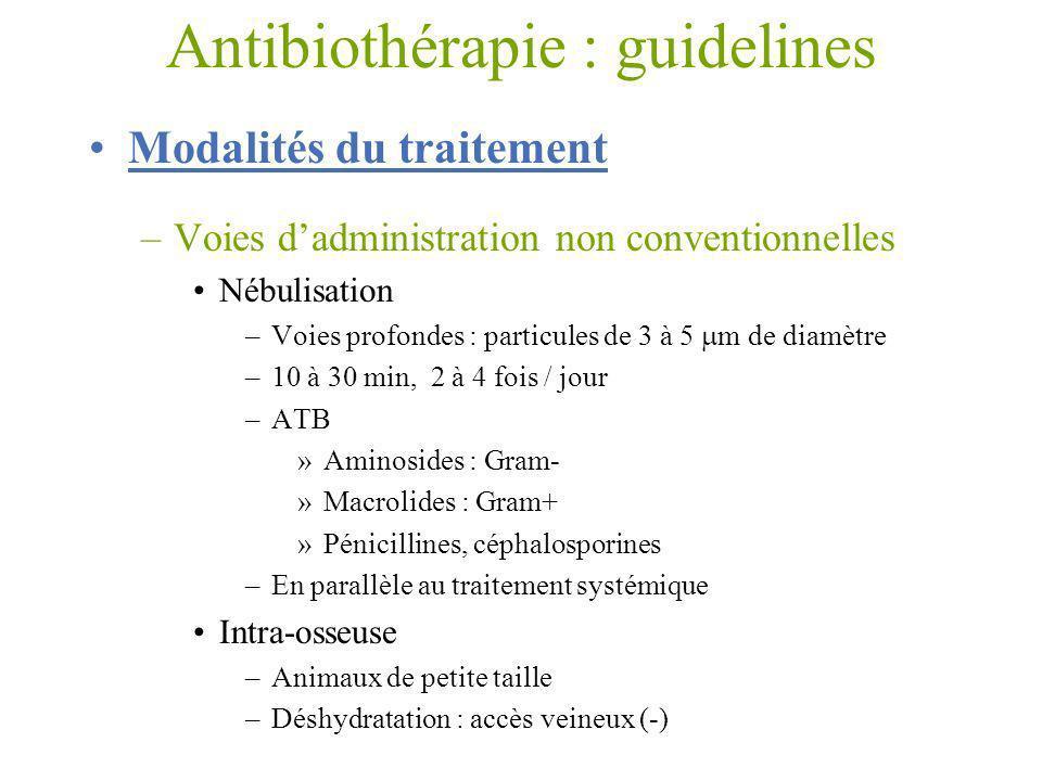 Modalités du traitement –Voies dadministration non conventionnelles Nébulisation –Voies profondes : particules de 3 à 5 m de diamètre –10 à 30 min, 2