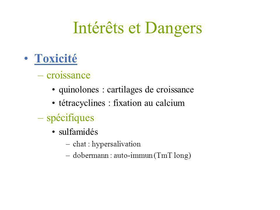 Intérêts et Dangers Toxicité –croissance quinolones : cartilages de croissance tétracyclines : fixation au calcium –spécifiques sulfamidés –chat : hyp