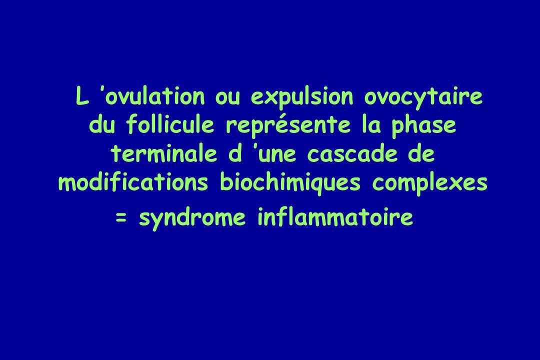 L ovulation ou expulsion ovocytaire du follicule représente la phase terminale d une cascade de modifications biochimiques complexes = syndrome inflam