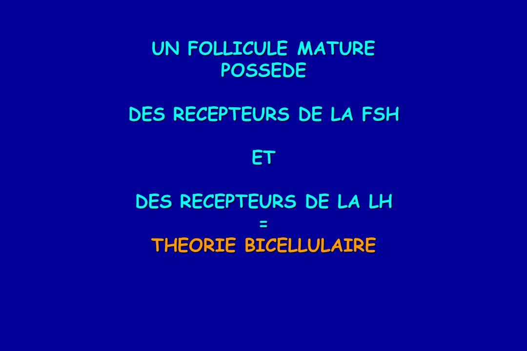 UN FOLLICULE MATURE POSSEDE DES RECEPTEURS DE LA FSH ET DES RECEPTEURS DE LA LH = THEORIE BICELLULAIRE