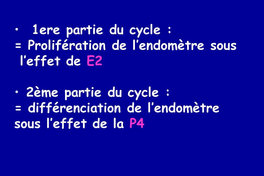 1ere partie du cycle : = Prolifération de lendomètre sous leffet de E2 2ème partie du cycle : = différenciation de lendomètre sous leffet de la P4