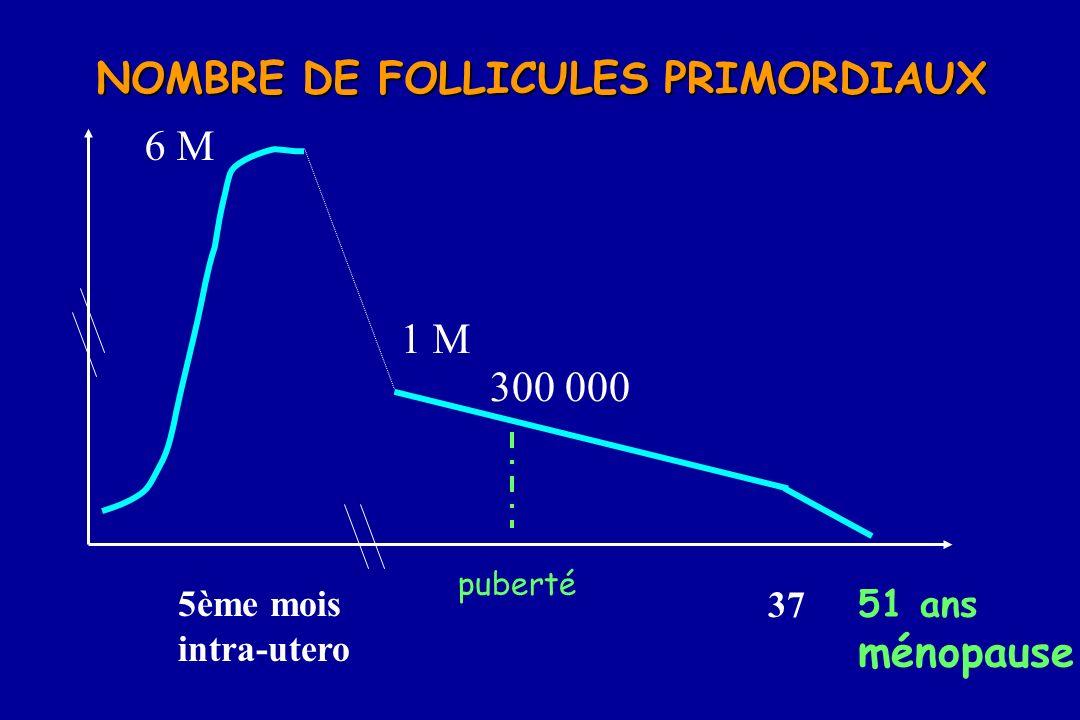 51 ans ménopause 37 5ème mois intra-utero 6 M 1 M 300 000 NOMBRE DE FOLLICULES PRIMORDIAUX puberté