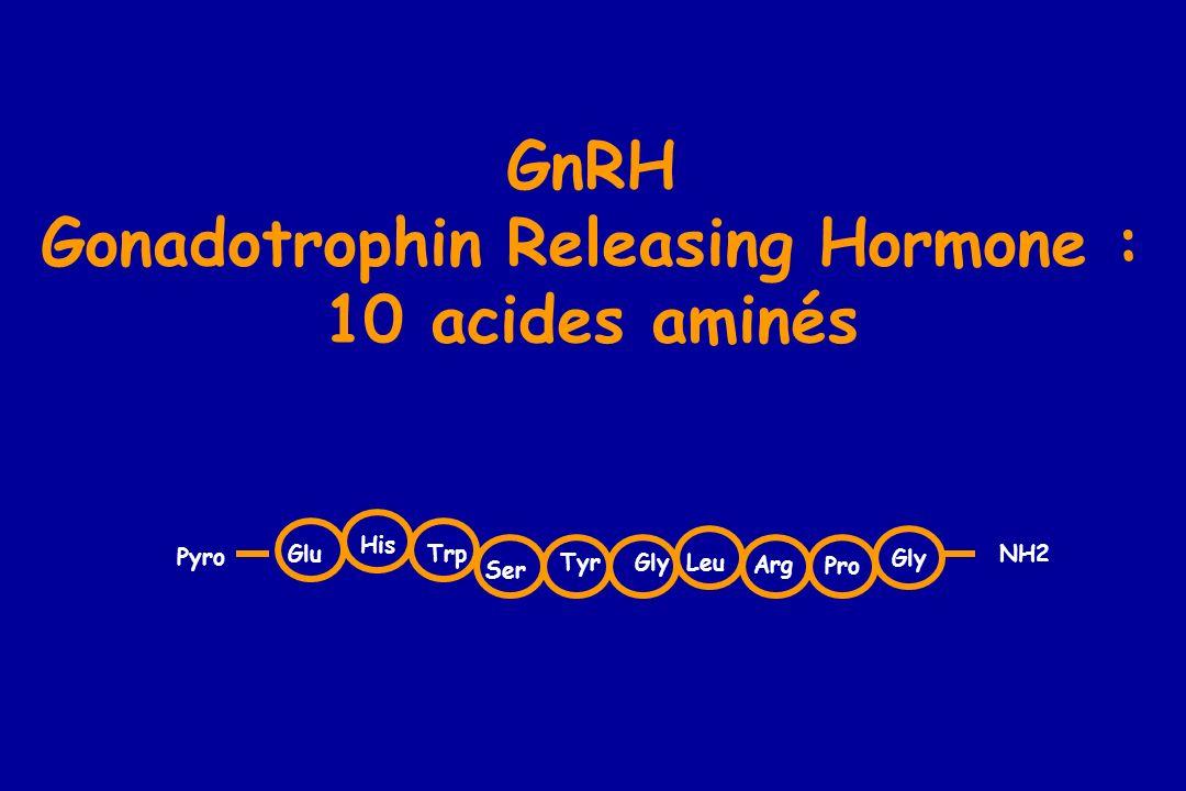 GnRH Gonadotrophin Releasing Hormone : 10 acides aminés Pro Gly Glu His Trp Ser TyrGlyLeu Arg NH2 Pyro