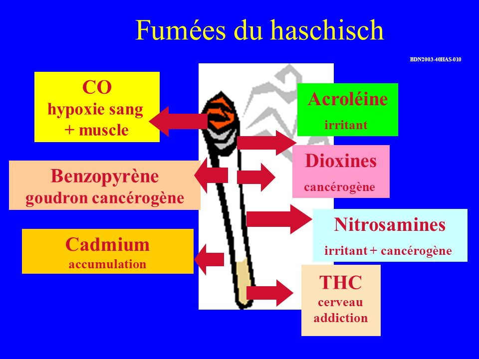 Fumées du haschisch Nitrosamines irritant + cancérogène CO hypoxie sang + muscle Cadmium accumulation Benzopyrène goudron cancérogène THC cerveau addi