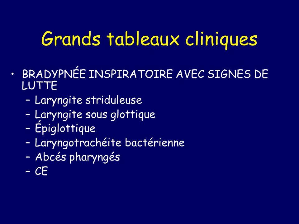 Grands tableaux cliniques BRADYPNÉE INSPIRATOIRE AVEC SIGNES DE LUTTE –Laryngite striduleuse –Laryngite sous glottique –Épiglottique –Laryngotrachéite