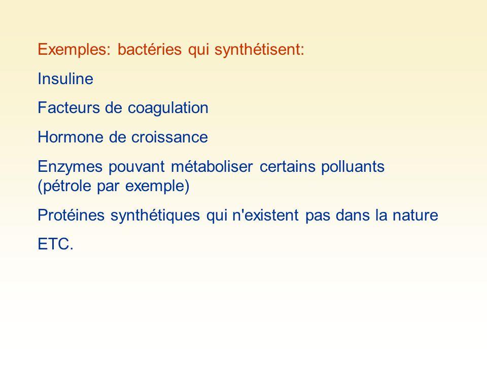 Exemples: bactéries qui synthétisent: Insuline Facteurs de coagulation Hormone de croissance Enzymes pouvant métaboliser certains polluants (pétrole p