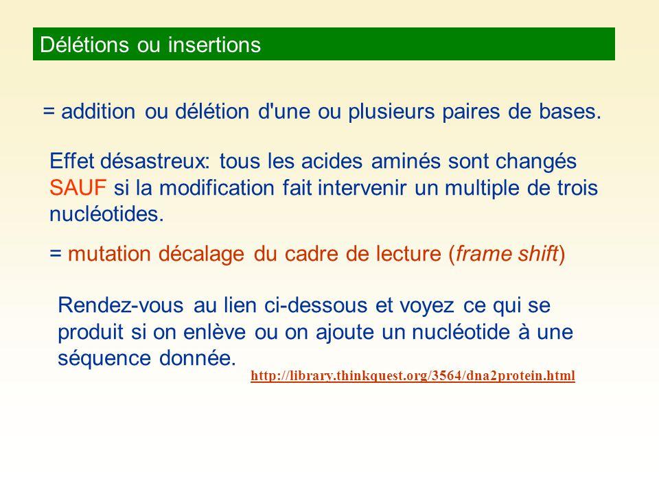 Délétions ou insertions = addition ou délétion d'une ou plusieurs paires de bases. Effet désastreux: tous les acides aminés sont changés SAUF si la mo