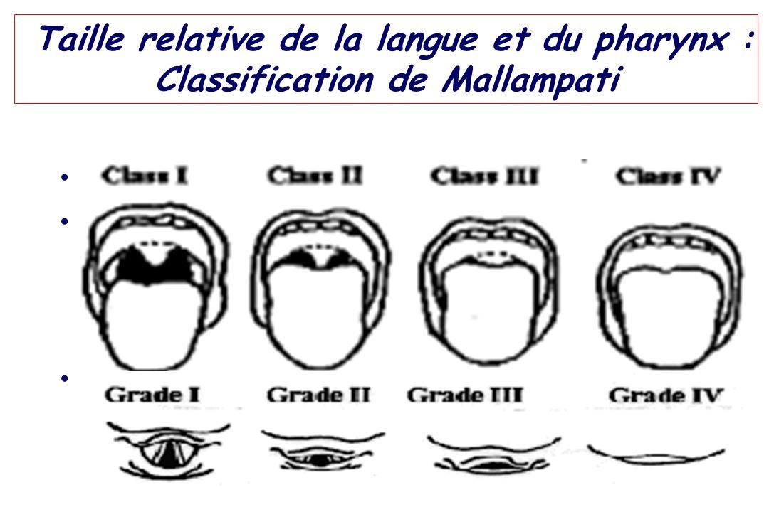 Taille relative de la langue et du pharynx : Classification de Mallampati Corrélée aux grades de Cormack & Lehane Examen simple en théorie ! – examen