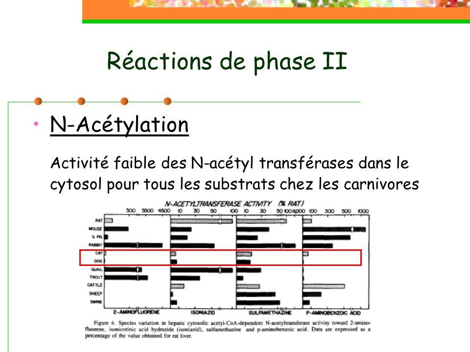 Réactions de phase II N-Acétylation Activité faible des N-acétyl transférases dans le cytosol pour tous les substrats chez les carnivores