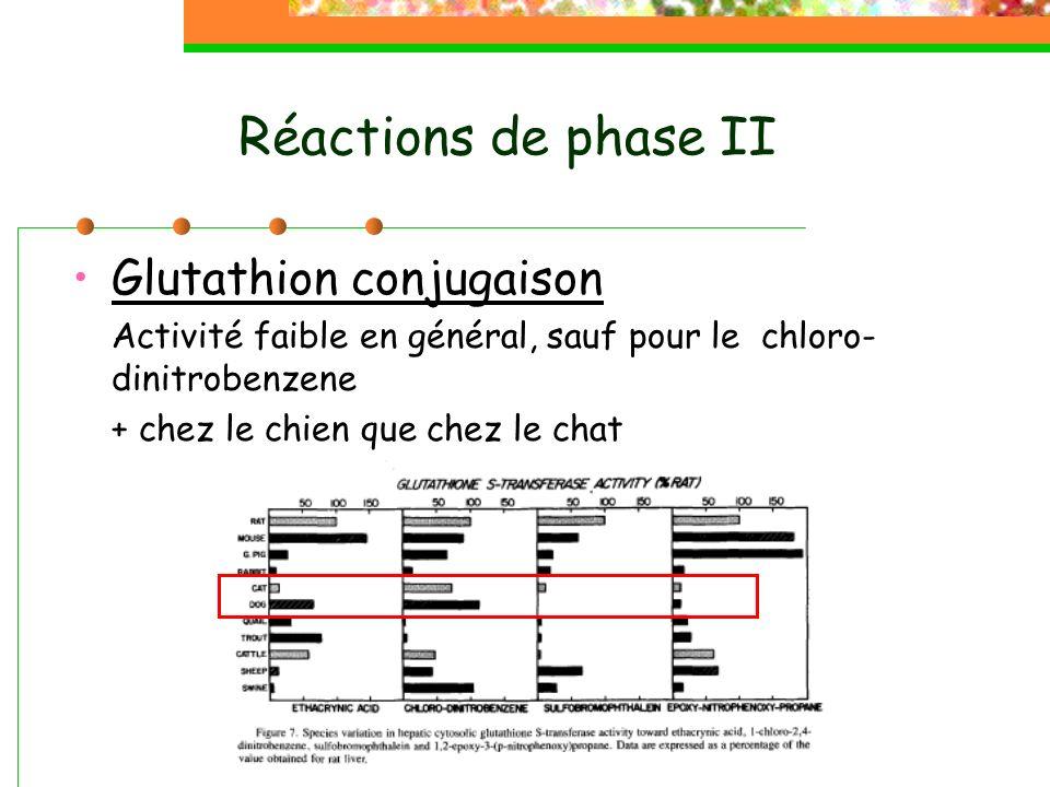 Réactions de phase II Glutathion conjugaison Activité faible en général, sauf pour le chloro- dinitrobenzene + chez le chien que chez le chat