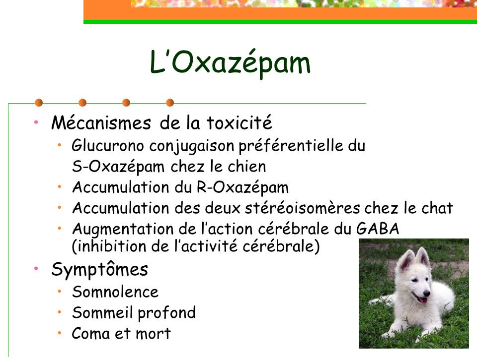 LOxazépam Mécanismes de la toxicité Glucurono conjugaison préférentielle du S-Oxazépam chez le chien Accumulation du R-Oxazépam Accumulation des deux stéréoisomères chez le chat Augmentation de laction cérébrale du GABA (inhibition de lactivité cérébrale) Symptômes Somnolence Sommeil profond Coma et mort
