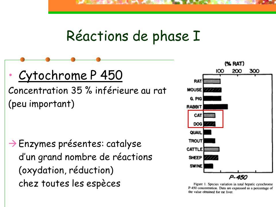 Réactions de phase I Cytochrome P 450 Concentration 35 % inférieure au rat (peu important) Enzymes présentes: catalyse dun grand nombre de réactions (oxydation, réduction) chez toutes les espèces