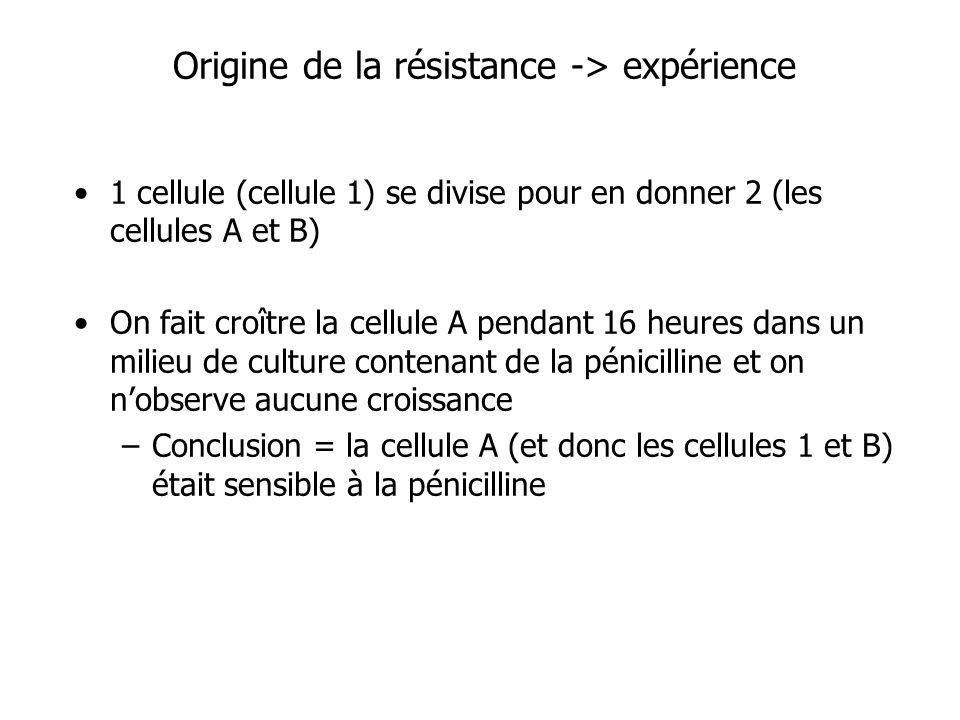 Origine de la résistance -> expérience 1 cellule (cellule 1) se divise pour en donner 2 (les cellules A et B) On fait croître la cellule A pendant 16