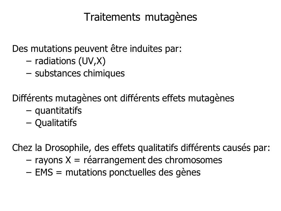 Traitements mutagènes Des mutations peuvent être induites par: –radiations (UV,X) –substances chimiques Différents mutagènes ont différents effets mut