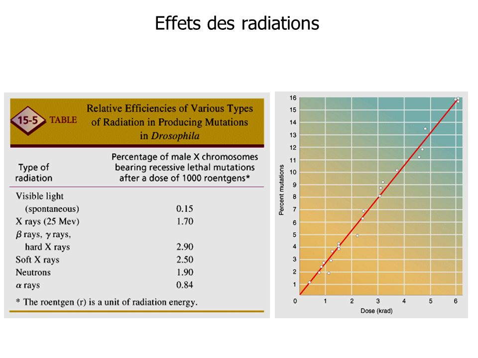 Effets des radiations