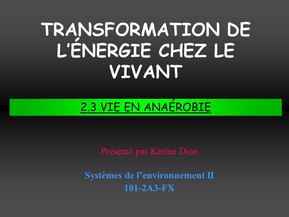 TRANSFORMATION DE LÉNERGIE CHEZ LE VIVANT Systèmes de lenvironnement II 101-2A3-FX Présenté par Karine Dion 2.3 VIE EN ANAÉROBIE