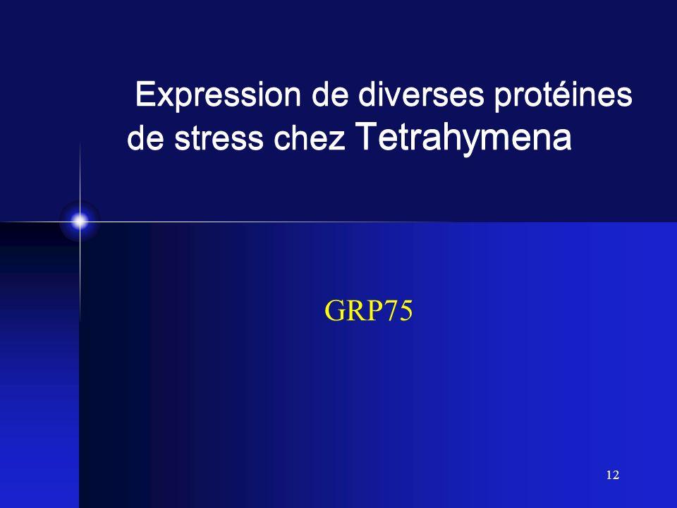 12 Expression de diverses protéines de stress chez Tetrahymena GRP75