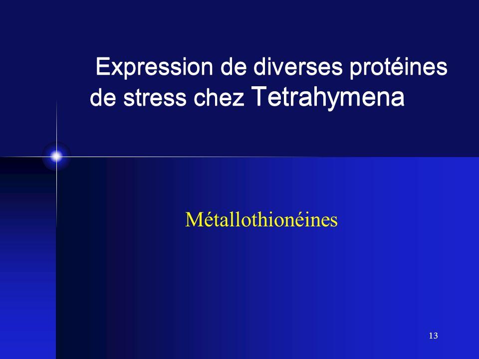 13 Expression de diverses protéines de stress chez Tetrahymena Métallothionéines
