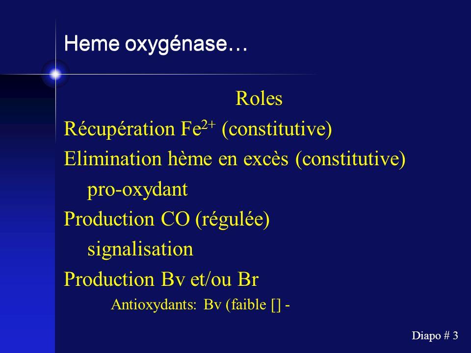 Diapo # 3 Heme oxygénase… Roles Récupération Fe 2+ (constitutive) Elimination hème en excès (constitutive) pro-oxydant Production CO (régulée) signali