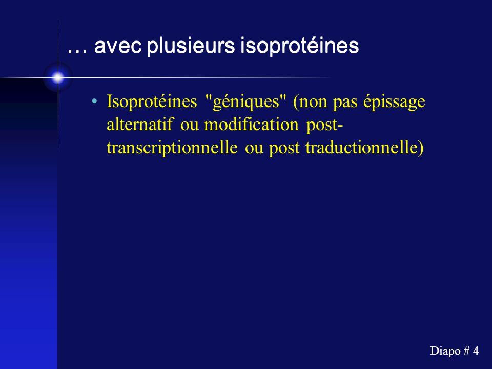 Diapo # 4 … avec plusieurs isoprotéines Isoprotéines