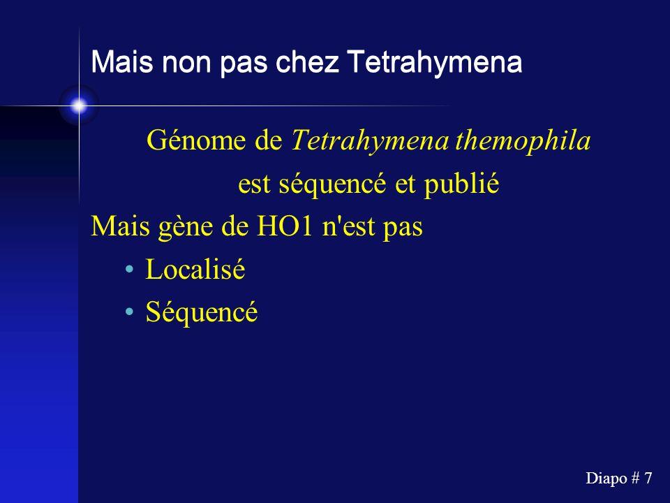 Diapo # 7 Mais non pas chez Tetrahymena Génome de Tetrahymena themophila est séquencé et publié Mais gène de HO1 n'est pas Localisé Séquencé