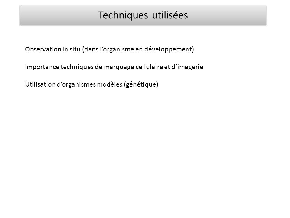 Observation in situ (dans lorganisme en développement) Importance techniques de marquage cellulaire et dimagerie Utilisation dorganismes modèles (géné