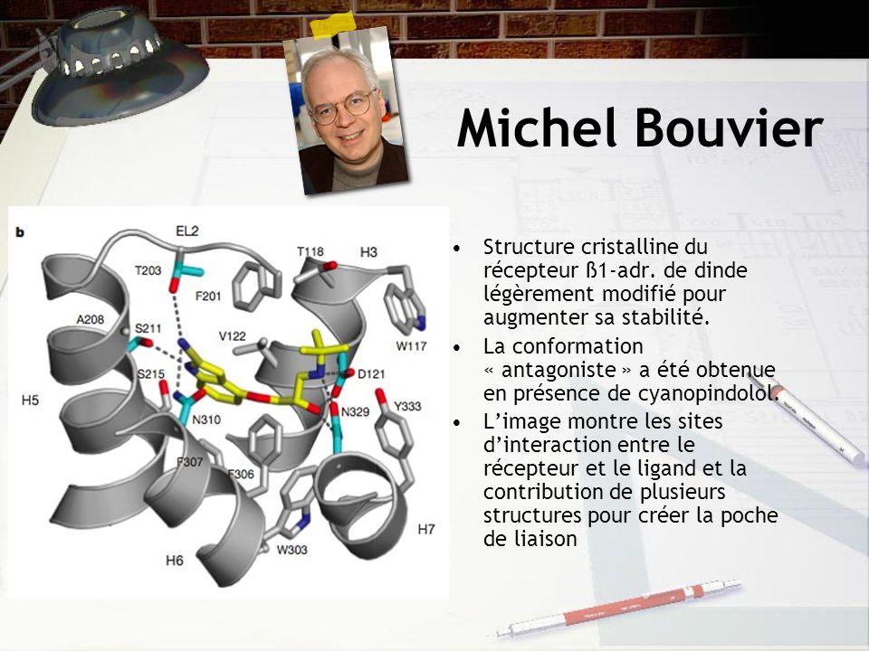Michel Bouvier Structure cristalline du récepteur ß1-adr.