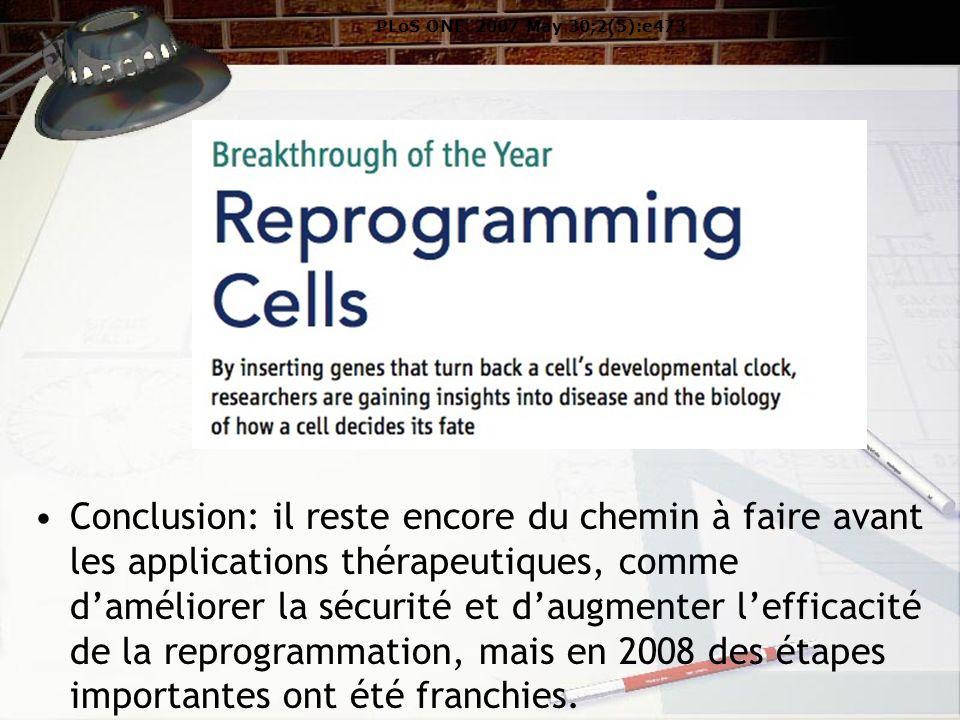 Conclusion: il reste encore du chemin à faire avant les applications thérapeutiques, comme daméliorer la sécurité et daugmenter lefficacité de la reprogrammation, mais en 2008 des étapes importantes ont été franchies.