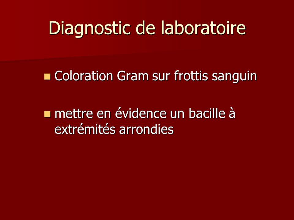 Diagnostic de laboratoire Coloration Gram sur frottis sanguin Coloration Gram sur frottis sanguin mettre en évidence un bacille à extrémités arrondies