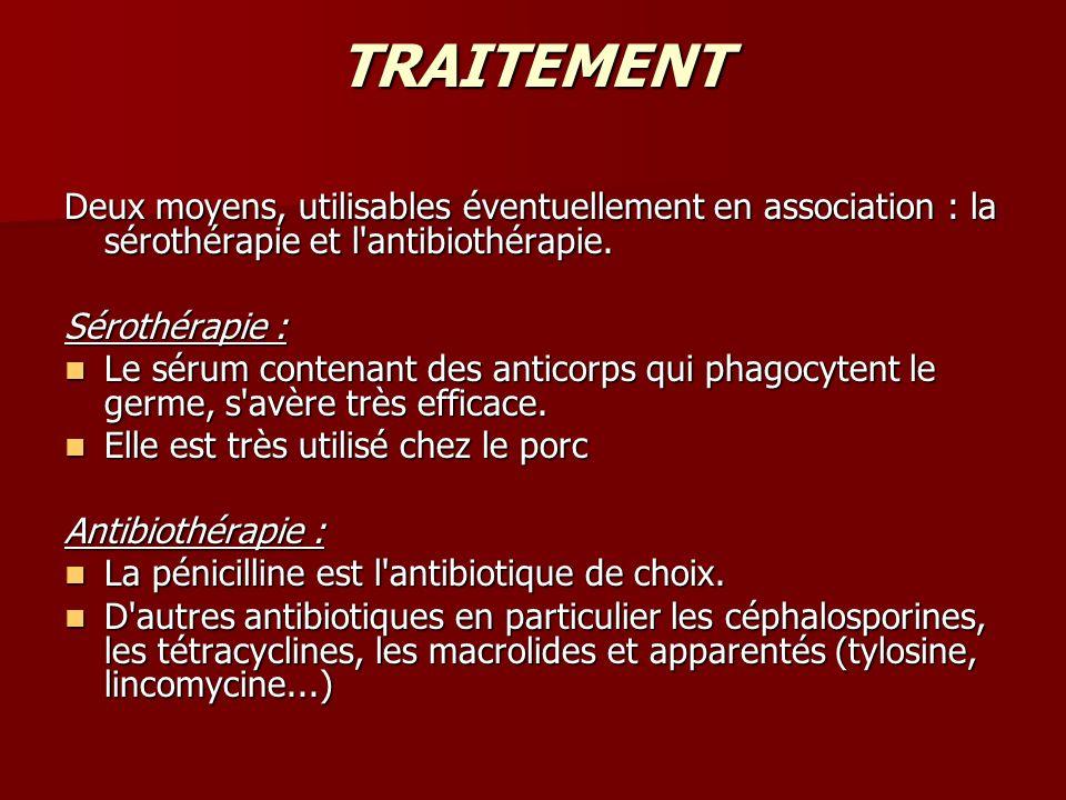 TRAITEMENT Deux moyens, utilisables éventuellement en association : la sérothérapie et l'antibiothérapie. Sérothérapie : Le sérum contenant des antico