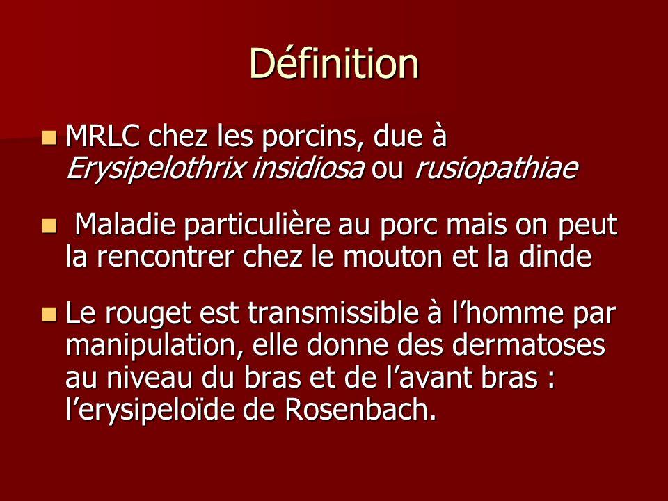 Définition MRLC chez les porcins, due à Erysipelothrix insidiosa ou rusiopathiae MRLC chez les porcins, due à Erysipelothrix insidiosa ou rusiopathiae