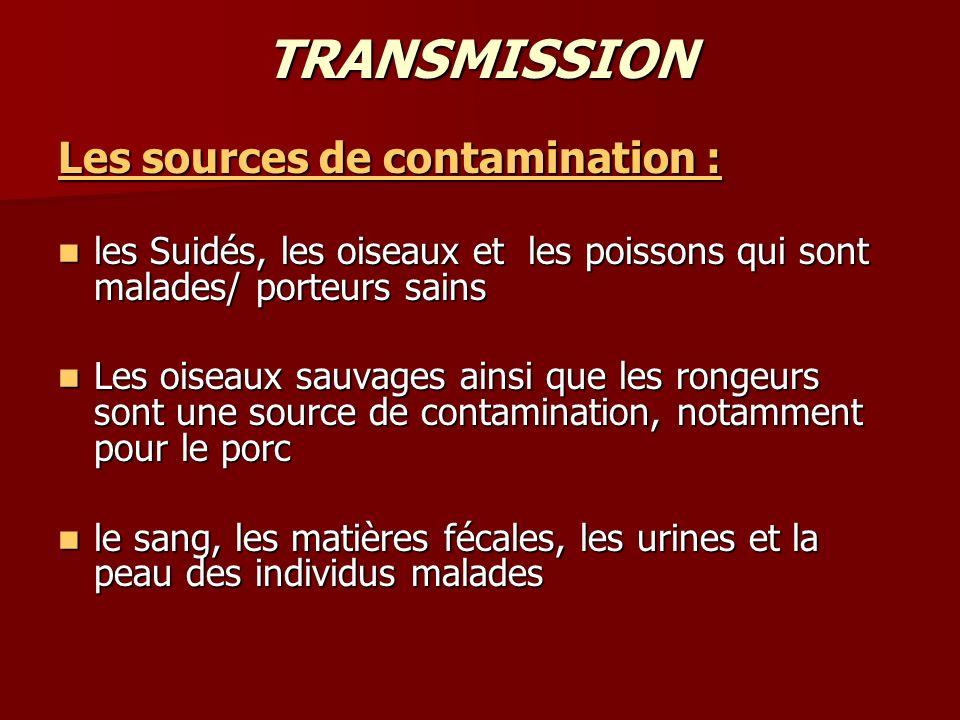 TRANSMISSION Les sources de contamination : les Suidés, les oiseaux et les poissons qui sont malades/ porteurs sains les Suidés, les oiseaux et les po
