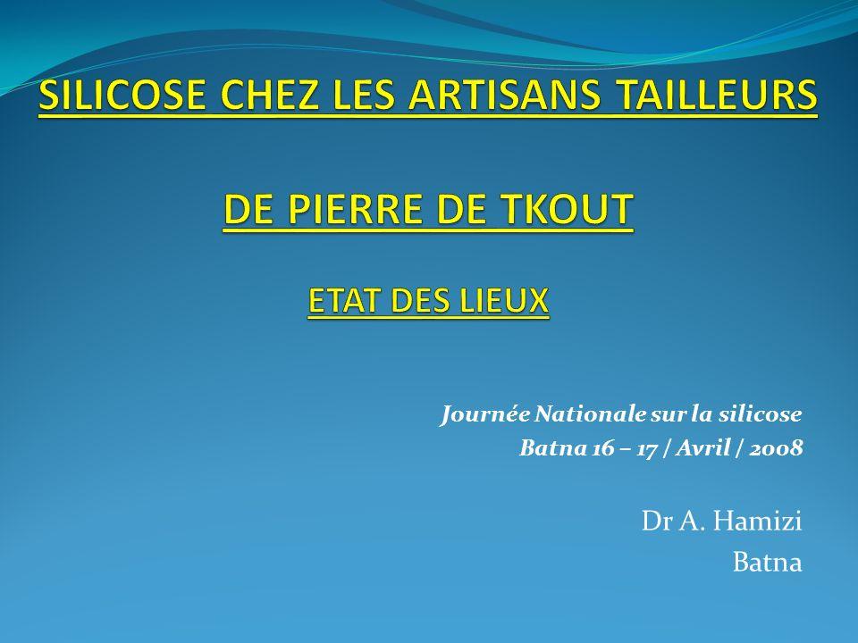 Journée Nationale sur la silicose Batna 16 – 17 / Avril / 2008 Dr A. Hamizi Batna