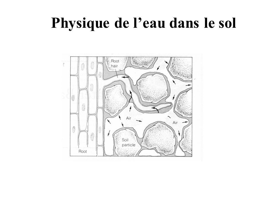Physique de leau dans le sol