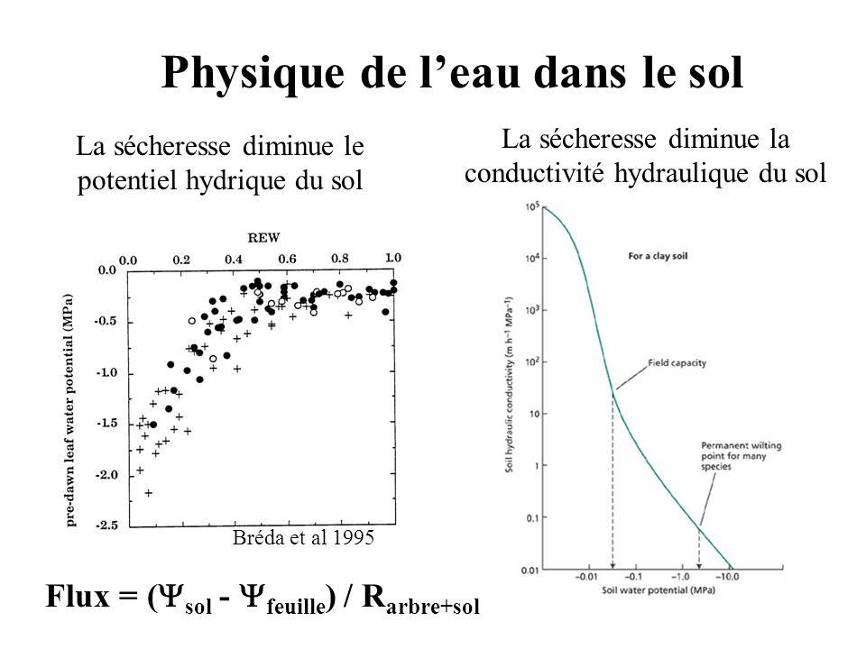 La sécheresse diminue le potentiel hydrique du sol La sécheresse diminue la conductivité hydraulique du sol Flux = ( sol - feuille ) / R arbre+sol Bréda et al 1995