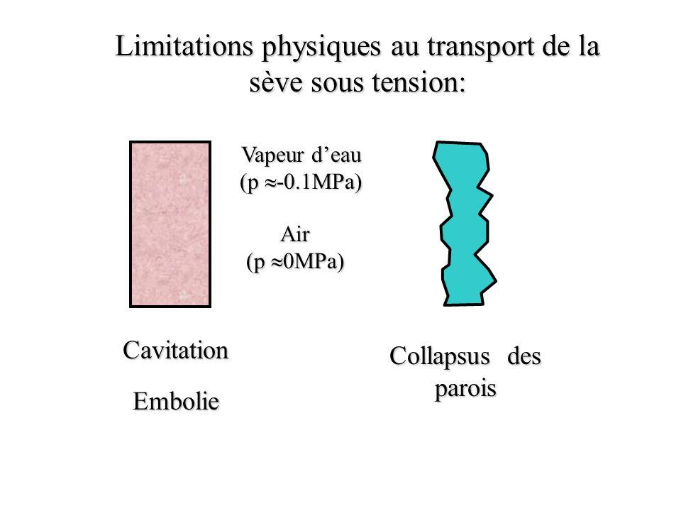 Cavitation Collapsus des parois Limitations physiques au transport de la sève sous tension: Vapeur deau (p -0.1MPa) Air (p 0MPa) Embolie